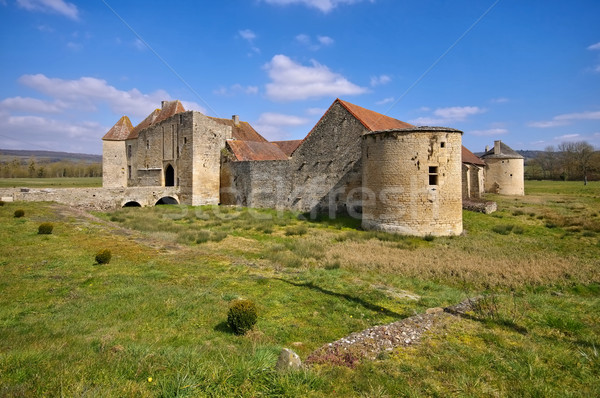 Chateau Eguilly in France Stock photo © LianeM