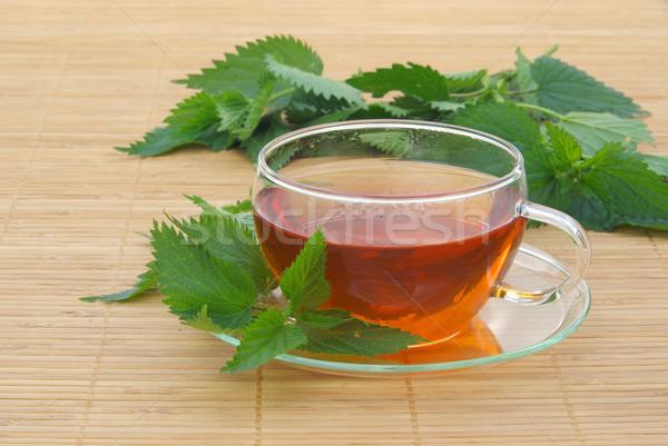 tea nettle 07 Stock photo © LianeM