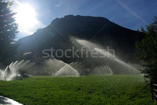 irrigation system 01 Stock photo © LianeM