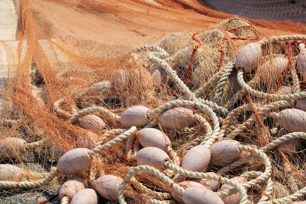 漁網 テクスチャ 魚 オレンジ 純 文字列 ストックフォト © LianeM
