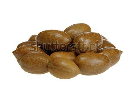 pecan nut 01 Stock photo © LianeM