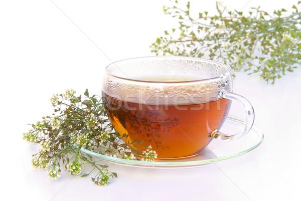 чай кошелька цветок медицинской стекла фон Сток-фото © LianeM