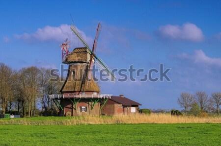 ポスト ミル 海 ヨーロッパ 風車 草原 ストックフォト © LianeM