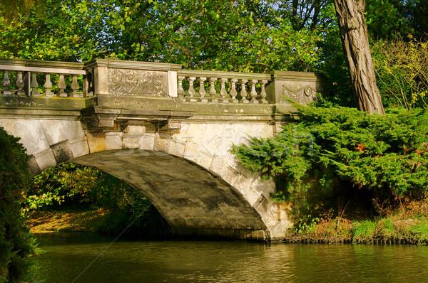 английский новых моста дерево лист лет Сток-фото © LianeM