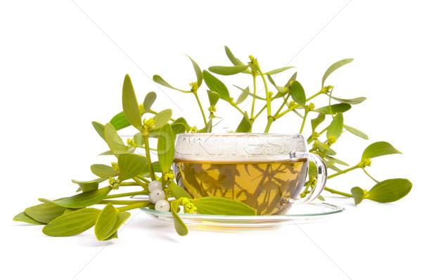 tea mistletoe 06 Stock photo © LianeM