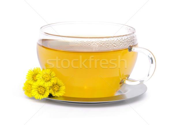 tea Coltsfoot 07 Stock photo © LianeM