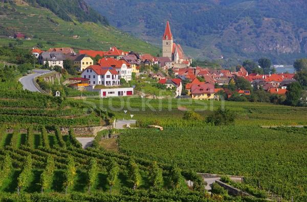 Weissenkirchen in Wachau  Stock photo © LianeM