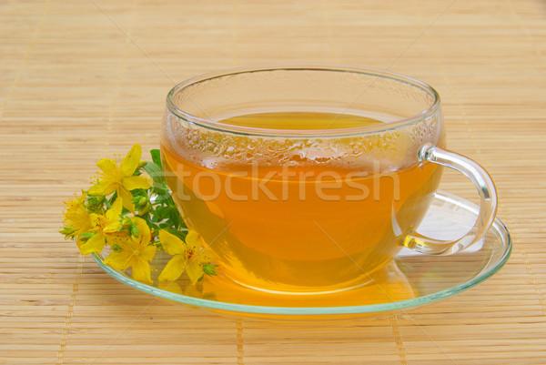 tea St Johns wort  Stock photo © LianeM