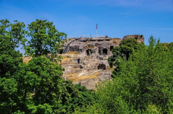 Regenstein castle  Stock photo © LianeM