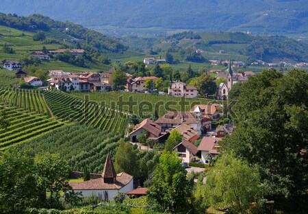 Frangarto view to Val d Adige Stock photo © LianeM