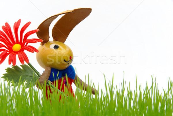 Conejo de Pascua 12 flor hierba vacaciones regalo Foto stock © LianeM
