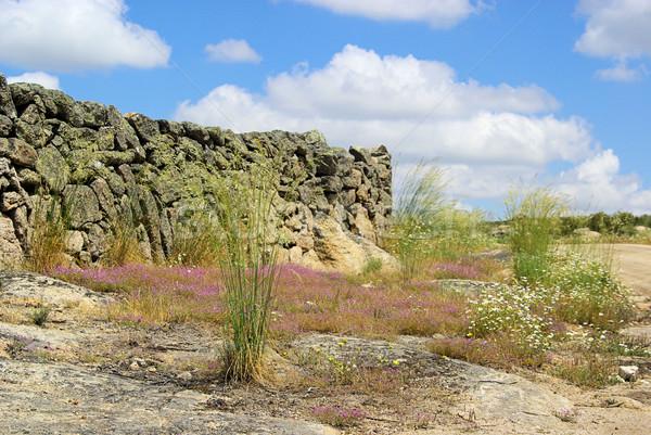 Valencia granit kaya manzara çim dağ Stok fotoğraf © LianeM