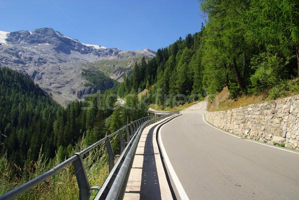Stelvio Pass 01 Stock photo © LianeM