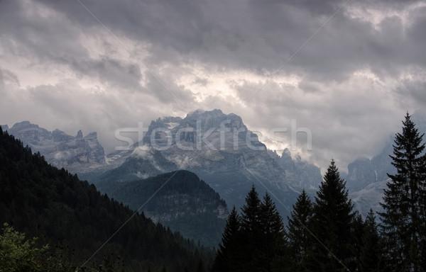 Alpen groep rock wolk Europa mist Stockfoto © LianeM