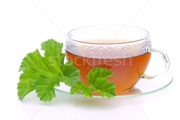 tea malva 04 Stock photo © LianeM