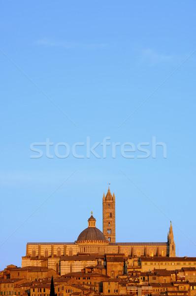 Siena night 01 Stock photo © LianeM