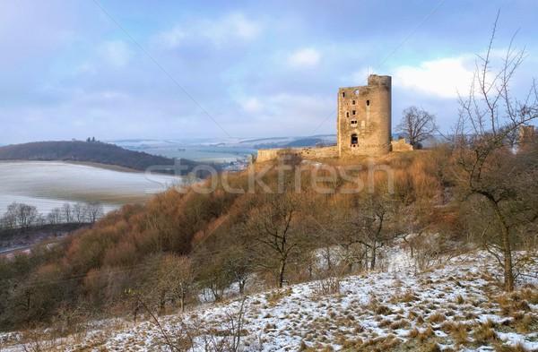 замок разорение дерево снега горные зима Сток-фото © LianeM
