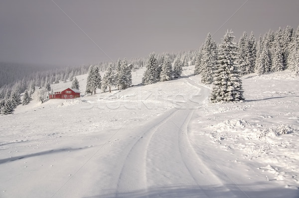 Giant Mountains in winter Stock photo © LianeM