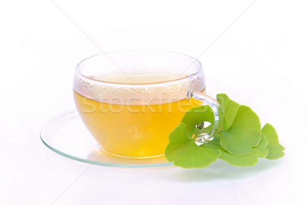 tea ginkgo 02 Stock photo © LianeM