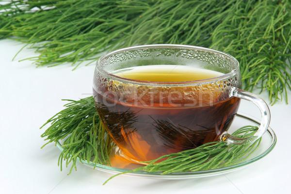 tea field horsetail 05 Stock photo © LianeM