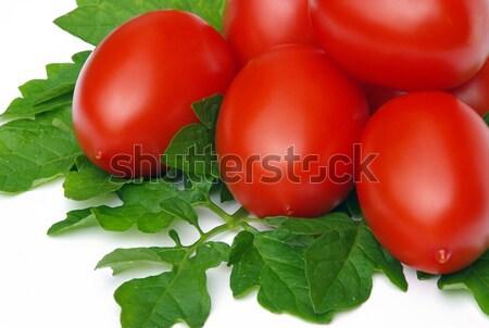 tomato 12 Stock photo © LianeM
