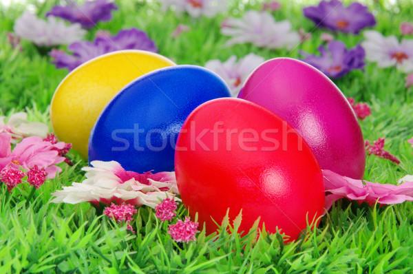пасхальных яиц цветок луговой На 25 трава яйцо Сток-фото © LianeM