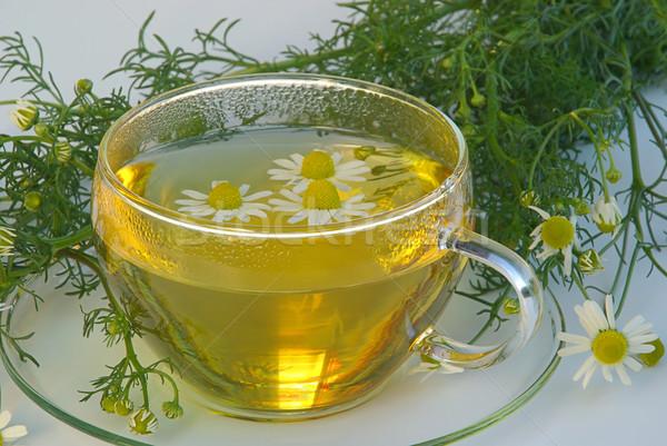 чай ромашка медицинской стекла фон пить Сток-фото © LianeM