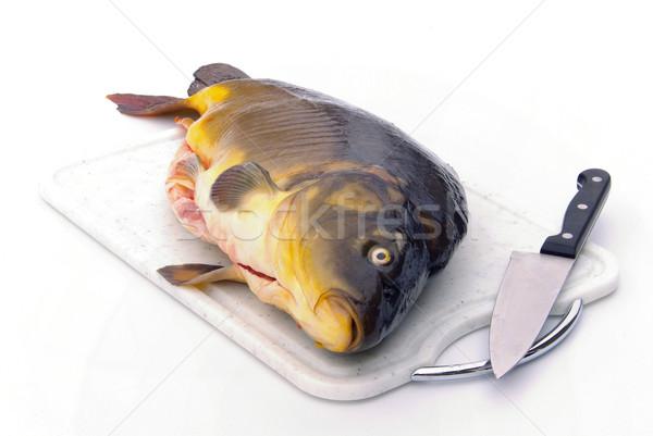 Karper keuken vissen eten dier vers Stockfoto © LianeM