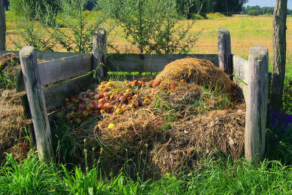 compost pile 05 Stock photo © LianeM