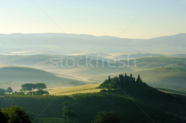 Тоскана холмы дома дерево трава природы Сток-фото © LianeM