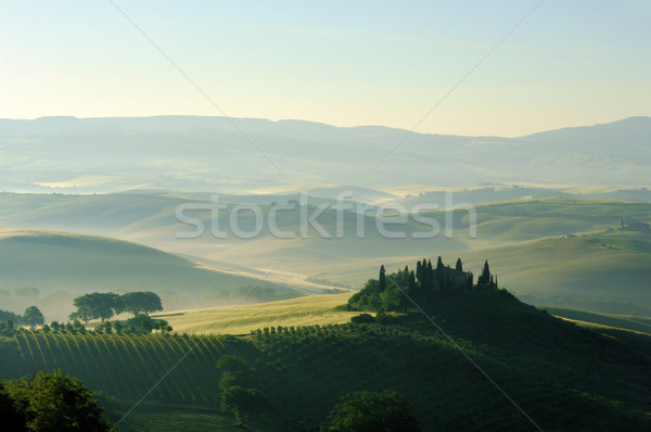 Toscane heuvels huis boom gras natuur Stockfoto © LianeM