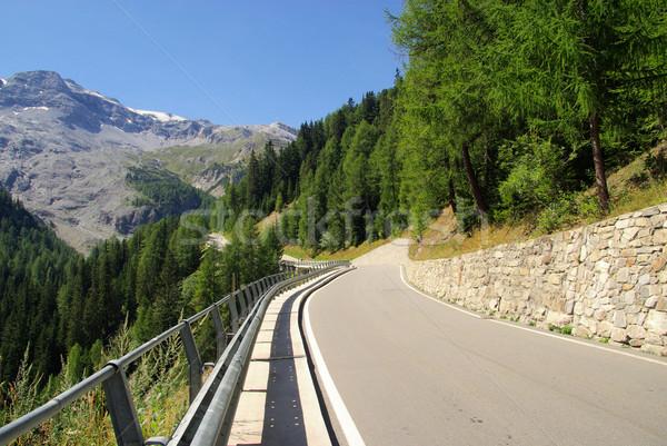 Stelvio Pass 04 Stock photo © LianeM