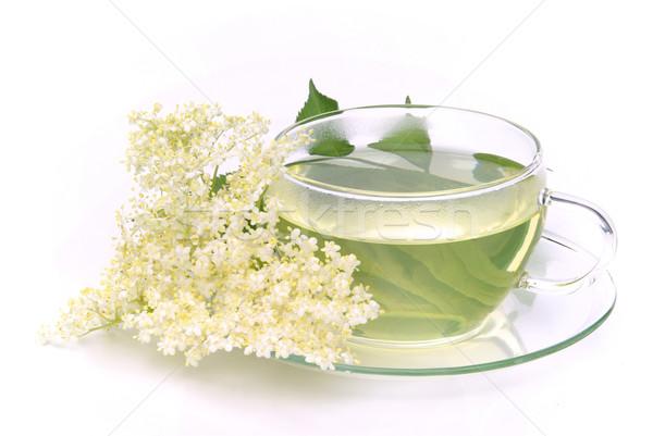 Thé aîné fleur verre fond vert Photo stock © LianeM