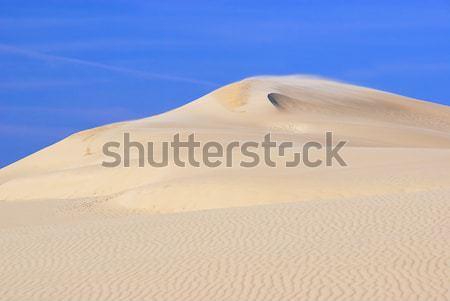 Dune du Pyla 14 Stock photo © LianeM