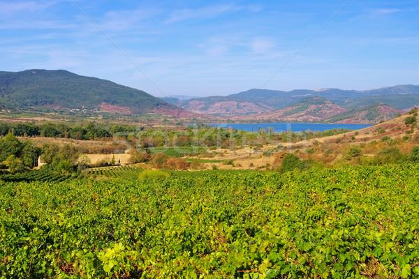 Lac du Salagou in France Stock photo © LianeM
