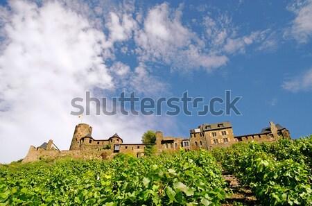 Montanha verão verde torre colina toscana Foto stock © LianeM