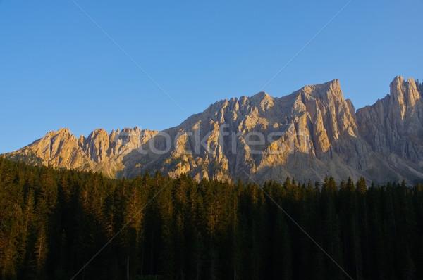 Latemar mountains in Italy Stock photo © LianeM