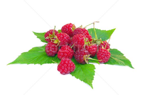 Framboesa 18 verde folhas vermelho frutas Foto stock © LianeM