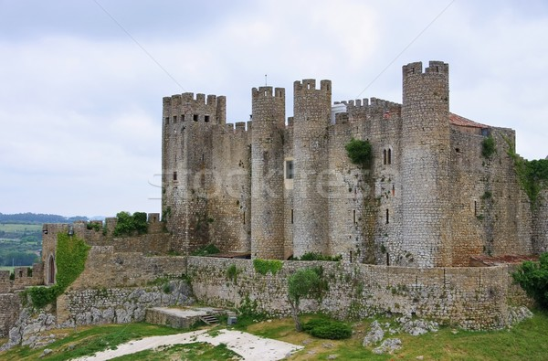 Obidos castle 01 Stock photo © LianeM