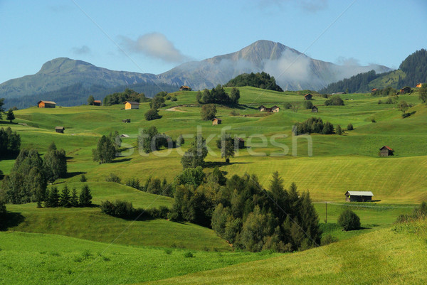 Fiss alp pasture  Stock photo © LianeM