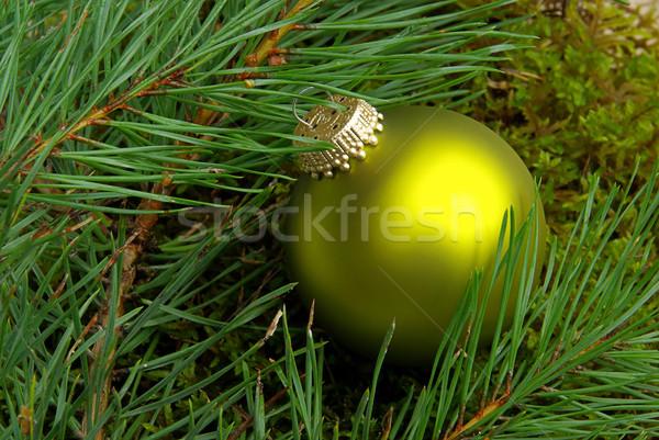 Natal bola 18 família arte verde Foto stock © LianeM