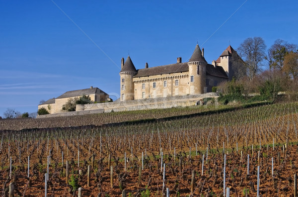 Chateau Rully in France Stock photo © LianeM