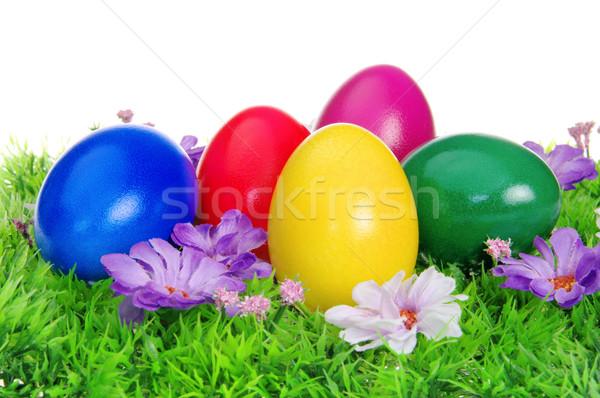 Húsvéti tojások virág legelő 14 fű tojás Stock fotó © LianeM