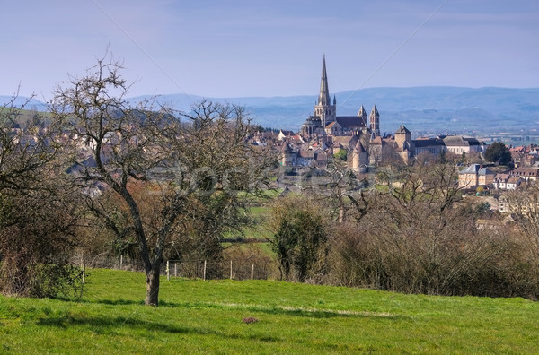Autun in France, the cathedral Stock photo © LianeM