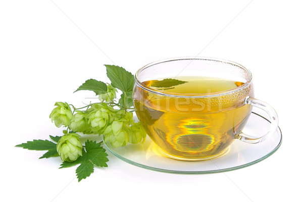 чай хмель лист стекла фон пить Сток-фото © LianeM