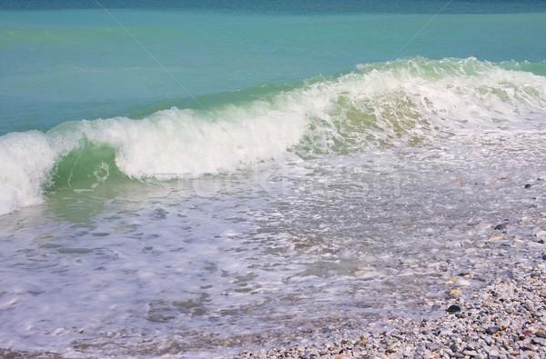 Pisa beach 06 Stock photo © LianeM