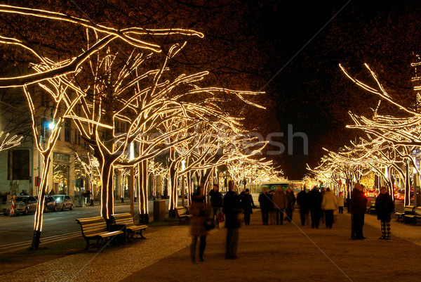 Berlin arbres Noël nuit lumières Photo stock © LianeM