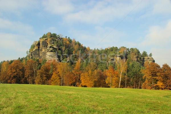Montanha 15 floresta paisagem tabela rocha Foto stock © LianeM