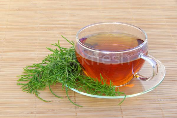 tea field horsetail 02 Stock photo © LianeM