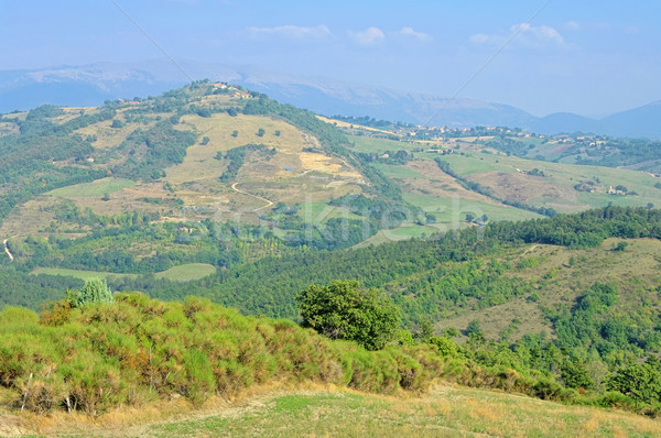 Umbria landscape 01 Stock photo © LianeM